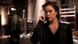 Reiko Aylesworth as Michelle Dessler, 24 Season 3