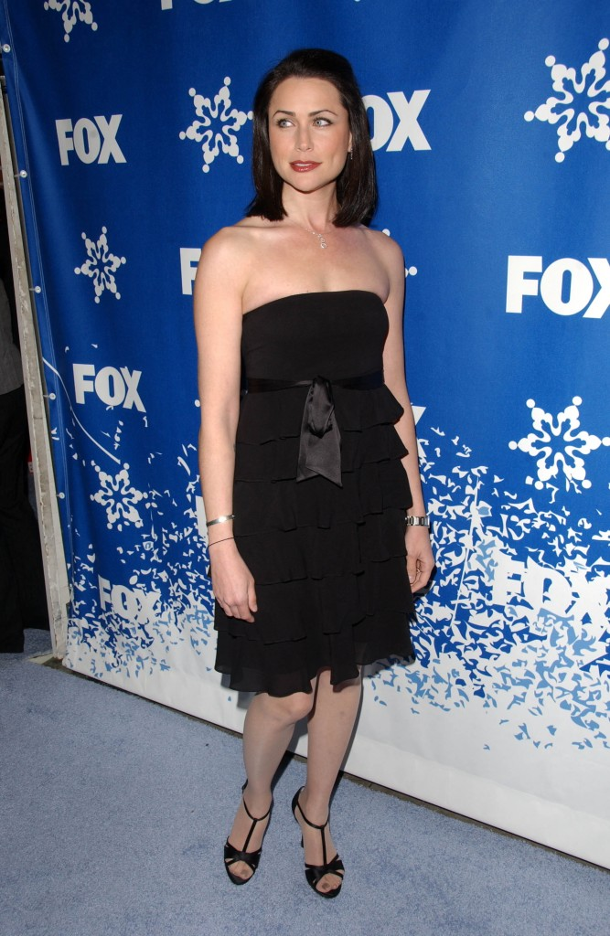 Rena Sofer at 2007 FOX All-Star Winter TCA Party